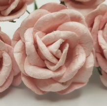 VERY LIGHT PINK GRANDIFLORA (3.5 cm) Mulberry Paper Roses